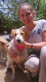 stage mogelijkheden voor dierenvrijwilligers in het buitenland.